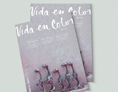 """""""Vida En Color"""" Publication Design"""