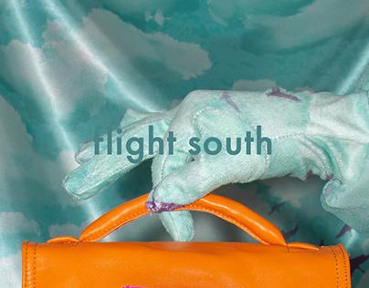 Flight South