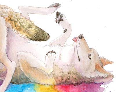 Coyote Joy