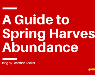 A Guide to Harvest - Jonathan Tooker