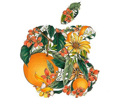 Today at Apple: Maggie Enterrios
