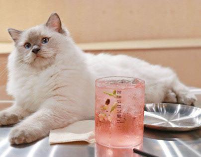 就是这样的喵® | Meow Restaurant | Guide Sign Design