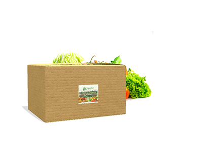 Diseño Etiqueta Packaging Natural Food Santiago