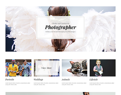 Divi Layout PSD for a Photographer