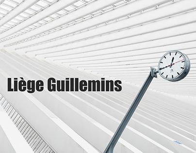 Liège Guillemins