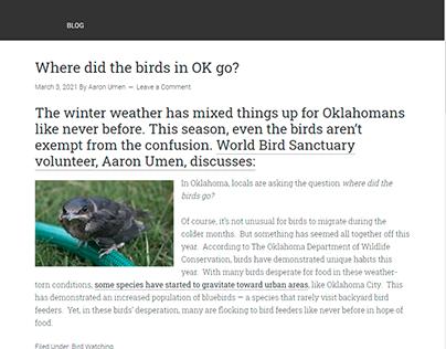 Where did the birds in OK go?