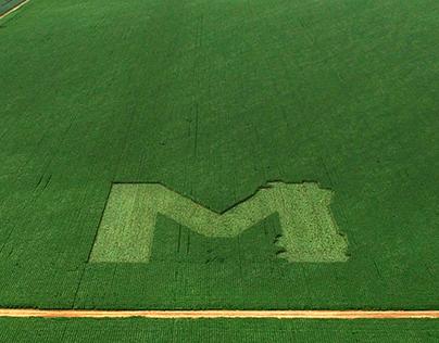 M de Monsoy