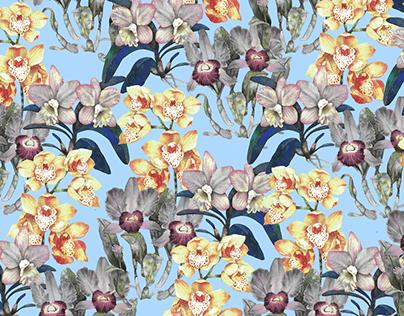 Mix orchid plants