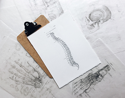 Myriad of Chiropractic Care Benefits