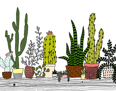 Cacti - Made with Adobe Fresco