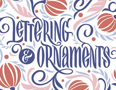 Lettering & Floral Patterns