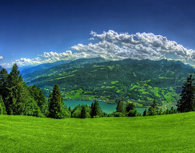 green land in Himachal India