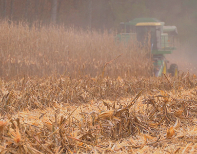 4K Stock Footage Collection - Harvest 2015