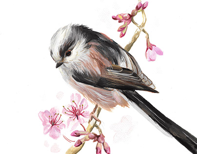 Long-tailed Tit Gouache Wildlife Painting