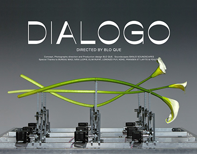Dialogo. An essay on sound and language