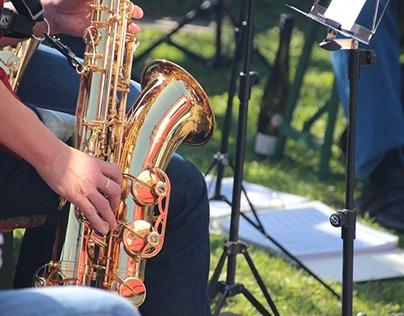 Albert Cyprys New York, NY: Saxophonist