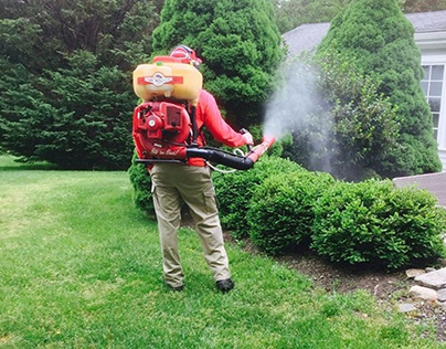 A Simple Guide to Spraying as a Method to Prevent Disea