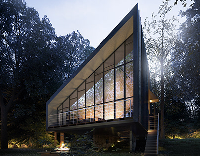 Modern Forest House