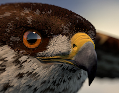 3d Arabian falcon Created with Maya and XGen