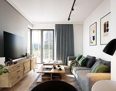 Hotel apartment design, Bjelasnica