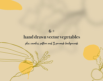 Hand Drawn Vector Vegetables and Pattern