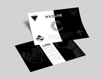 Brandbook (Manual Corporativo) Aline