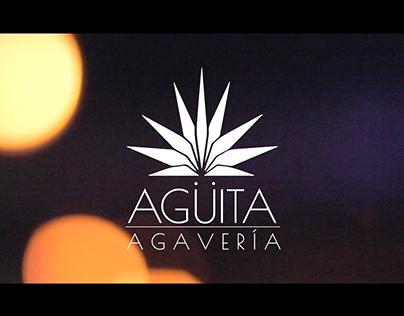 Segundo Aniversario Agüita Agavería