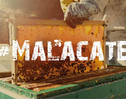#MALACATE - HONEY