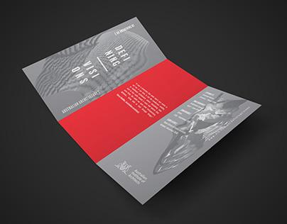 Defining Visions Brochure