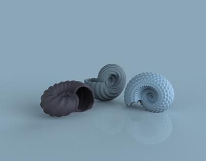 Nautilus shell | Nurbs bump