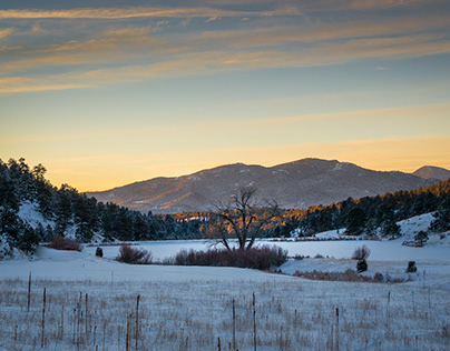 One Winter in Colorado Foothills
