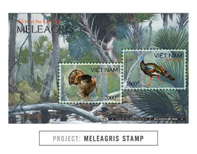 MELEAGRIS STAMP Project   Illustration