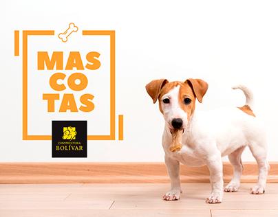 Campaña Mascotas - Constructora Bolívar