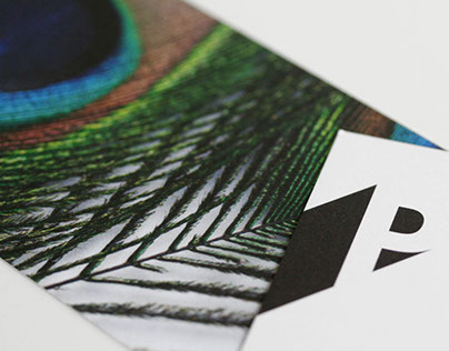 Visual Identity La Plume Media