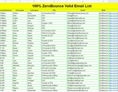 Fintech Company CEO list (100% ZeroBounce Valid)