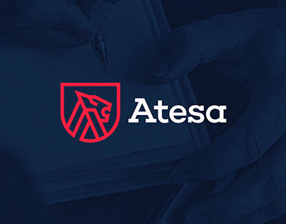 Atesa Risk Advisors
