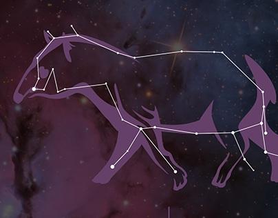 Constelações Brasileiras/ Brazillian Constelations