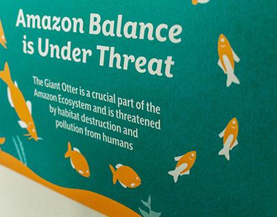 Balance the Amazon