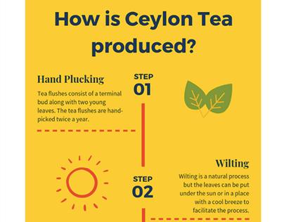 Ceylon Tea Infographic for Teakruthi