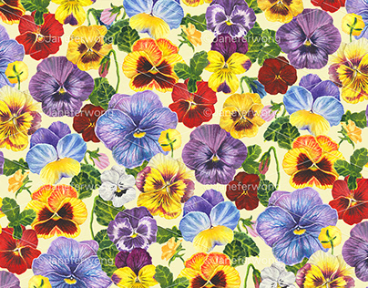 Watercolor pansy flowers- yellow mix