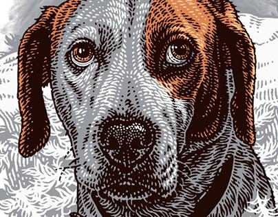 Downwards dog tv series
