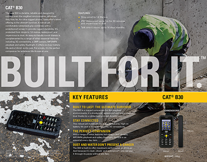 CAT Phones Product Brochures