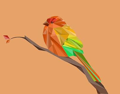 Polygonal bird