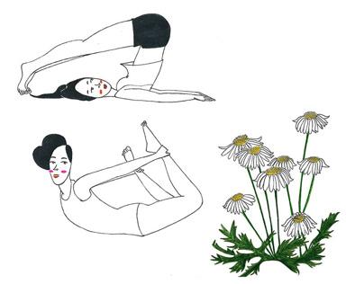 My illustrations for J.kim x Haena SS16