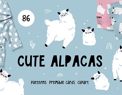 CUTE ALPACAS | Patterns & Clipart
