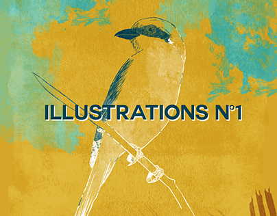 Illustrations #1 - 2016