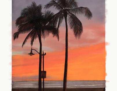 Palms are calm