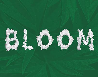 Bloom   Handmade Typeface
