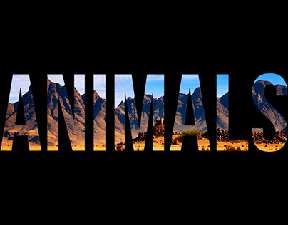 Low Poly animals.