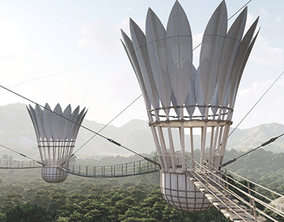 Hanging Bridge With Observation Points